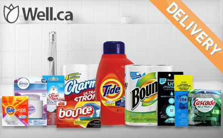 WagJag - $15 for a Well House and Home Cleaning Bundle