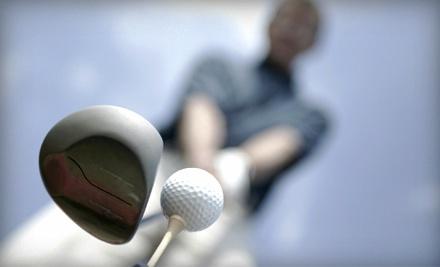 Metro Fairway Indoor Golfing Calgary