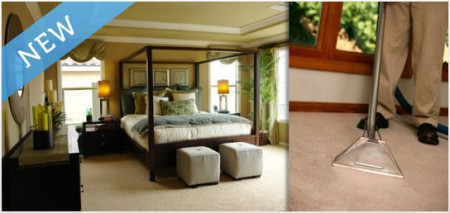 Triumph Carpet Cleaning Services TeamBuy