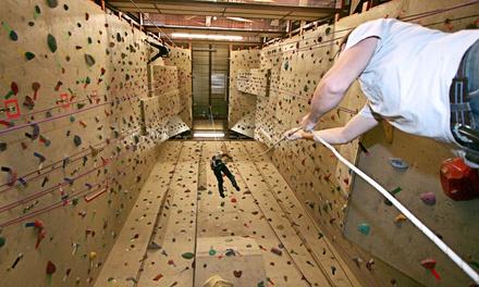 The Crux Climbing & Bouldering