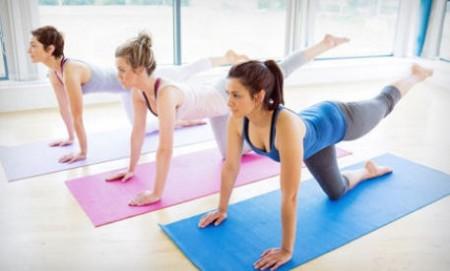 MetaBody Yoga & Fitness Pass Calgary
