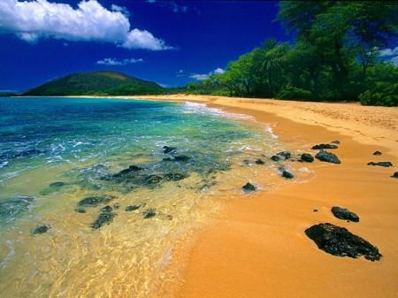 YYC Deals Cheap flights from Calgary to Maui, San Francisco, Chicago, New York