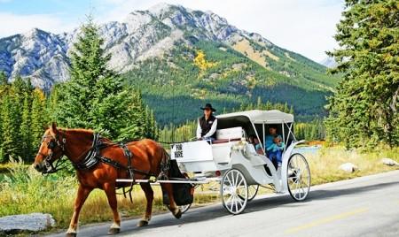 Holiday on Horseback1