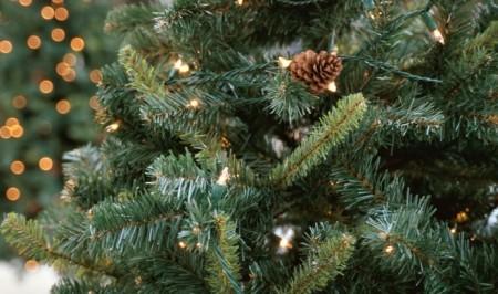 Five Star Christmas Tree Co.