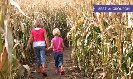 Calgary Corn Maze & Fun Farm1